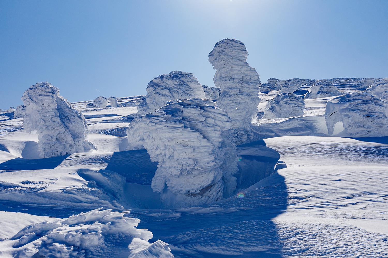 かっこいい感じで成長したモンスター。雪と風と水中の水分が作り出す地球のアートだ。深海のようにも見える樹氷のきめ細かさは何度見ても驚く