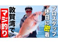 【超高級魚が大漁♪】海仕様ハイエースで行く福井沖釣りの旅。名古屋スタッフの休日を追ったら1日が濃すぎた。